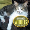 Hi My Name Is Wobbles