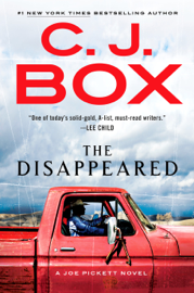 The Disappeared book