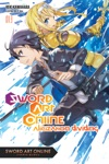 Sword Art Online 13 Light Novel