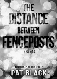 The Distance Between Fenceposts