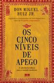 Os cinco níveis de apego Book Cover