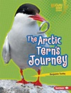 The Arctic Terns Journey
