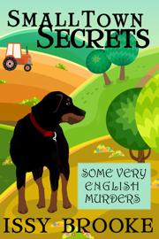 Small Town Secrets book