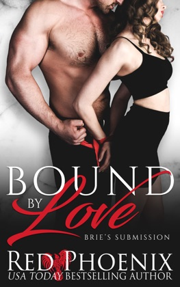 Bound by Love image
