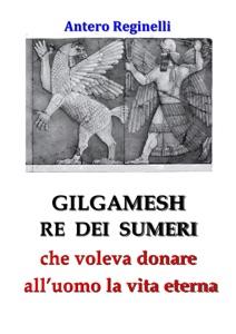 Gilgamesh Re di Sumeri che voleva donare all'uomo la vita eterna Book Cover