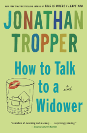 How to Talk to a Widower book