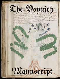 The Voynich Manuscript book
