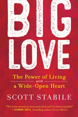 Big Love - Scott Stabile book