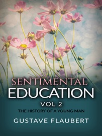 SENTIMENTAL EDUCATION, OR THE HISTORY OF A YOUNG MAN VOL 2
