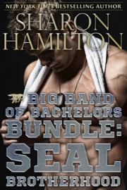Big Band of Bachelors Bundle PDF Download