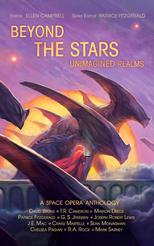 Patrice Fitzgerald, G. S. Jennsen, David Bruns, Craig Martelle, Joseph Robert Lewis, J.E. Mac, TR Cameron, R. A. Rock, Marion Deeds, Chelsea Pagan, Sean Monaghan & Mark Sarney - Beyond the Stars: Unimagined Realms
