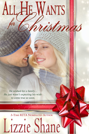 All He Wants For Christmas - Lizzie Shane book summary