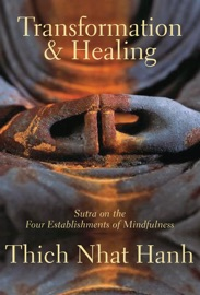 Transformation and Healing PDF Download