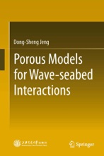 Porous Models For Wave-seabed Interactions