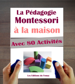 Le Manuel de la Pédagogie Montessori à la Maison. Explications, Conseils et 80 activités proposées.