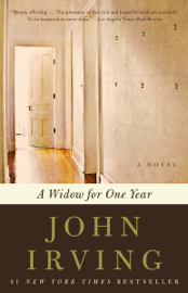 A Widow for One Year book