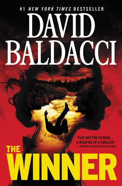 The Winner - David Baldacci book cover