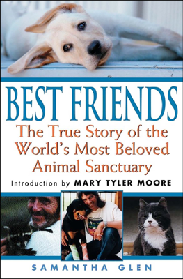 Best Friends - Samantha Glen book