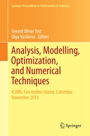 Analysis Modelling Optimization And Numerical Techniques