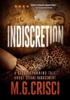 Indiscretion A Story Of Sexual Harassment From THE ACCUSED MALES POINT OF VIEW Expanded 2018 Edition