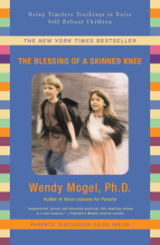 The Blessing of a Skinned Knee book