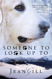 Someone To Look Up To - Jean Gill book summary