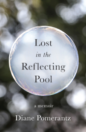 Lost in the Reflecting Pool book