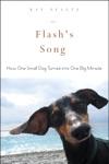 Flashs Song