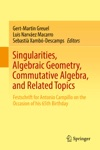 Singularities Algebraic Geometry Commutative Algebra And Related Topics