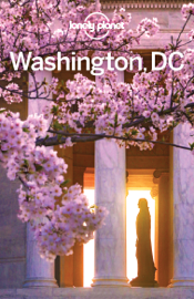 Washington DC Travel Guide book
