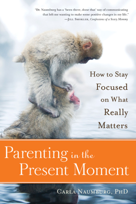 Parenting in the Present Moment - Carla Naumburg book