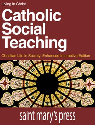 Catholic Social Teaching - Brian Singer-Towns book