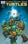 Teenage Mutant Ninja Turtles 41