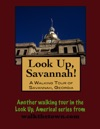 Look Up Savannah A Walking Tour Of Savannah Georgia
