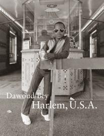 Dawoud Bey Harlem, U.S.A.