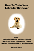 How To Train Your Labrador Retriever