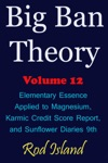 Big Ban Theory Elementary Essence Applied To Magnesium Karmic Credit Score Report And Sunflower Diaries 9th Volume 12
