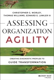 Assessing Organization Agility