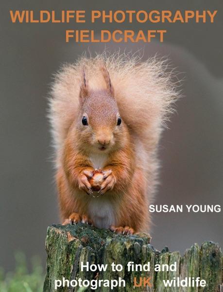 Wildlife Photography Fieldcraft