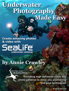 Underwater Photography Made Easy Book Review