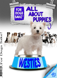 All About Westie Puppies