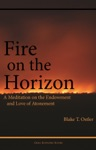 Fire On The Horizon A Meditation On The Endowment And Love Of Atonement