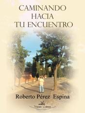 Download and Read Online Caminando hacia tu encuentro