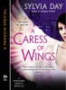 A Caress of Wings
