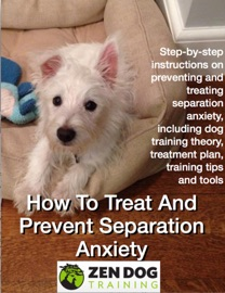 How To Treat And Prevent Separation Anxiety