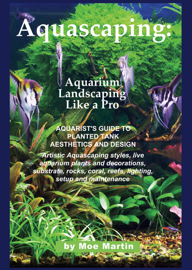 Aquascaping: Aquarium Landscaping Like a Pro