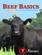 Beef Basics