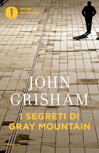 John Grisham - I segreti di Gray Mountain