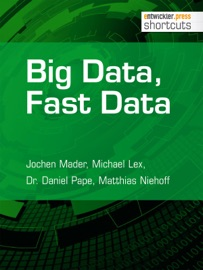 Big Data Fast Data