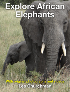 Explore African Elephants Book Review